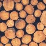 bois empilé