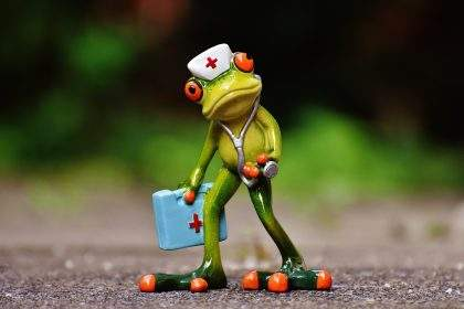 grenouille medecin